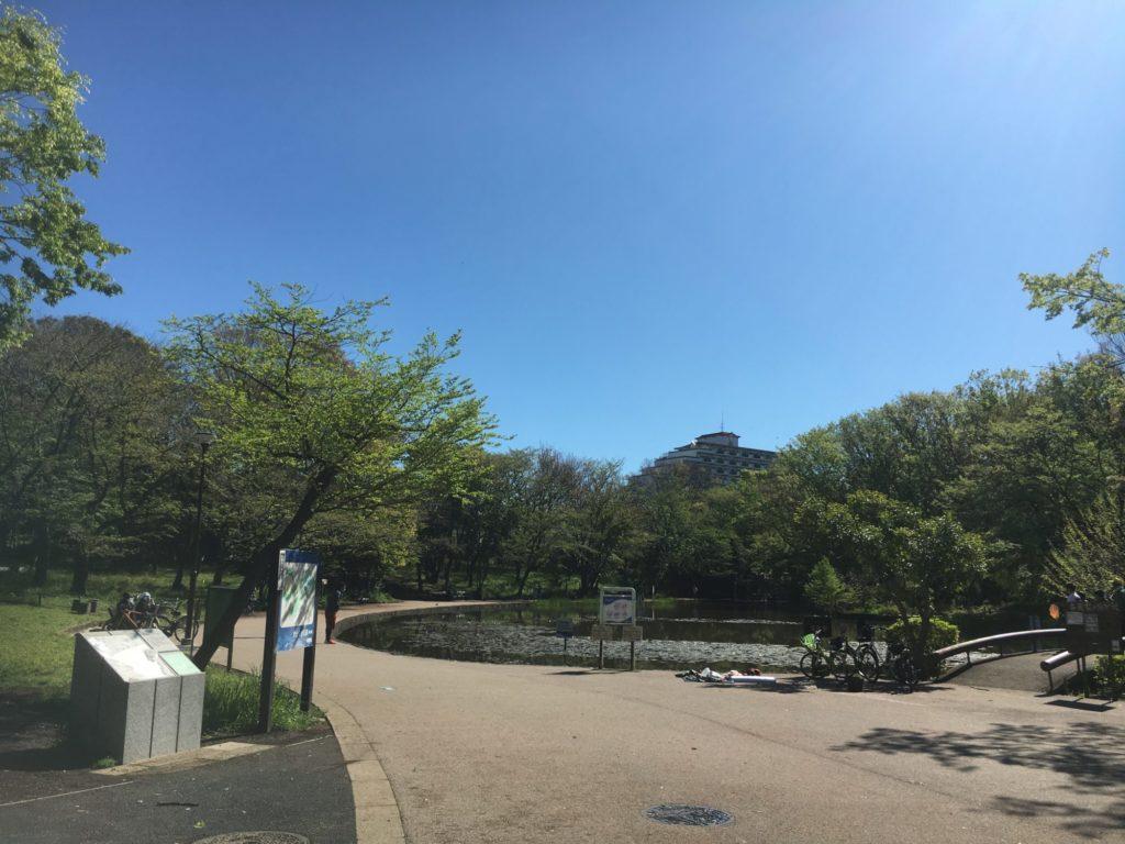 今日の都筑区緑道